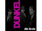 Ärzte, Die - Dunkel (Ltd. Doppelvinyl Im Schuber Mit...